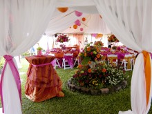 Orange_and_fushia_wedding_007