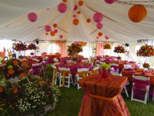 Orange_and_fushia_wedding_008