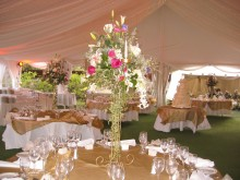 Wedding_interior