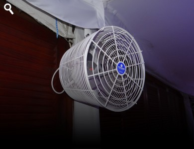 "Tent Fan 12"" - Available With Misting Ring"